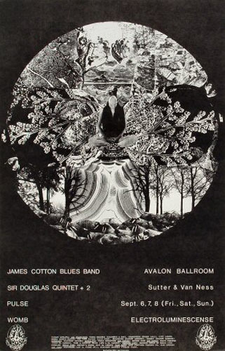 FD # 136-1 James Cotton Blues Band Family Dog Poster FD136