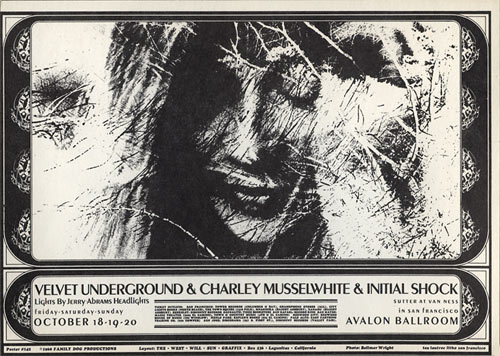 FD # 142 Velvet Underground Family Dog postcard FD142