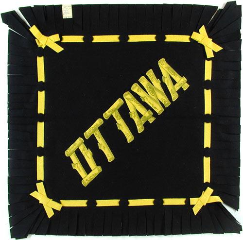 Ottawa University (Braves) Pillow Cover