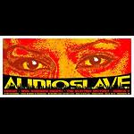 Jeff Wood - Drowning Creek Audioslave Chris Cornell Handbill