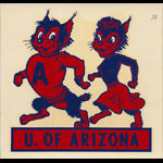 University of Arizona Wildcats Decal