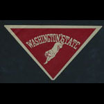 Washington State College (State College of Washington) Sticker