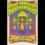 Chris Robinson Brotherhood 2016 Fillmore F1451 Poster