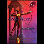 Elastica 1995 Fillmore F201 Poster