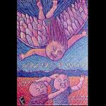 Sleater-Kinney New Fillmore Poster F406