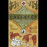 Calexico New Fillmore Poster F588