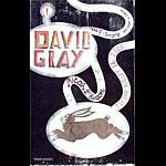David Gray New Fillmore Poster F710