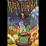 Lila Downs New Fillmore Poster F849