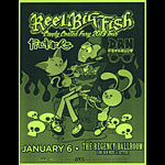 Thom Foolery Reel Big Fish - Candy Coated Fury 2013 Tour Flyer