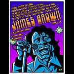Justin Hampton James Brown Poster