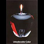 Julius Friedman Unbelievable Color Poster