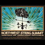 Northwest String Summit Poster
