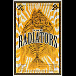 Thomas Scott (Eyenoise) The Radiators Poster
