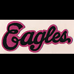 Eagles Logo Script Patch