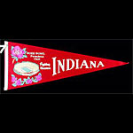Indiana University Hoosiers Rose Bowl Football Pennant