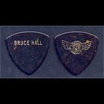REO Speedwagon Bruce Hall Guitar Pick