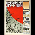 Jay Ryan The Flaming Lips Poster