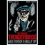 Scrojo The Fabulous Thunderbirds Poster