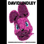 Scrojo David Lindley Poster