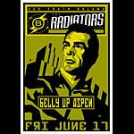 Scrojo Radiators Poster