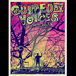 Todd Slater Guided by Voices Poster