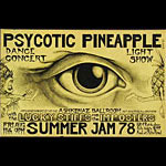 John Seabury Psycotic Pineapple Summer Jam Punk Flyer / Handbill